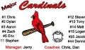 3x5_cardinals_basic2