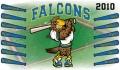 3x5_falcons_full