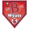 pennant_homeplate_red_sox