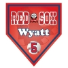 pennant_homeplate_red_sox2