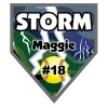 pennant_homeplate_storm