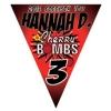 triangle_pennants_cherrybombs